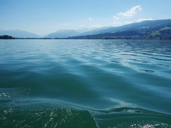 Zürichsee mit Insel Ufenau.